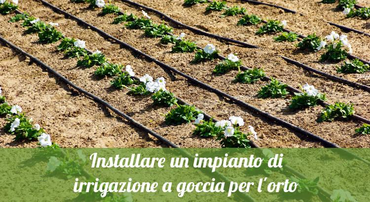 installare un impianto di irrigazione a goccia per l'orto - orto24