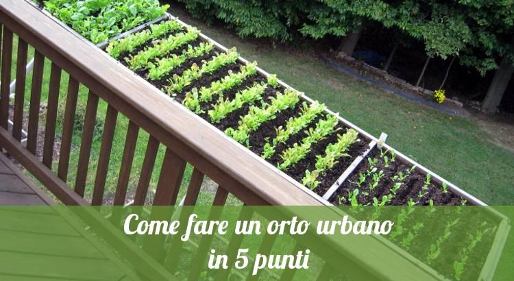 Come fare un orto urbano in 5 punti - Orto24