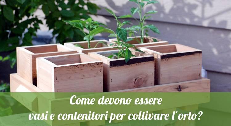 Vasi e contenitori per coltivare l\'orto - Orto24