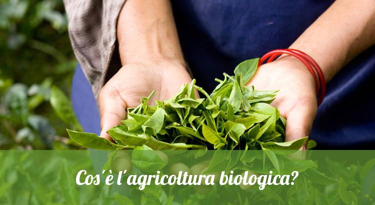 Produzione agricola biologica e naturale.