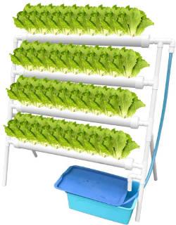Kit di coltivazione idroponica per ortaggi.
