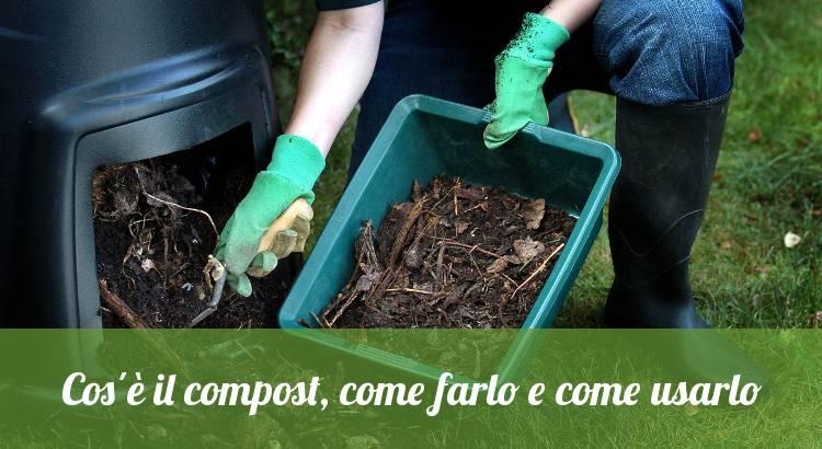 Cos'è il compost e come usarlo.