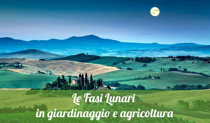Le fasi lunari in giardinaggio e agricoltura.