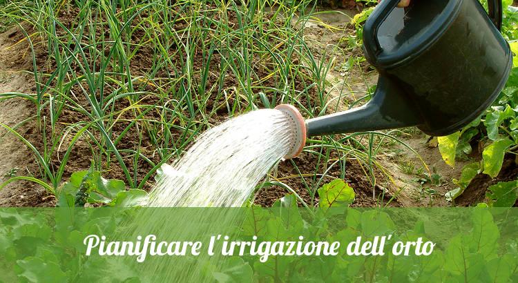Irrigare orto con innaffiatoio.