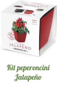 Kit peperoncini Jalapeño.