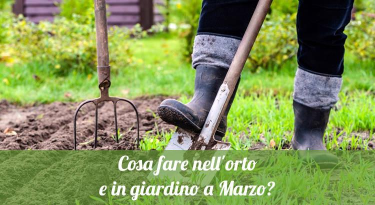 Cosa fare a Marzo in orto e giardino.