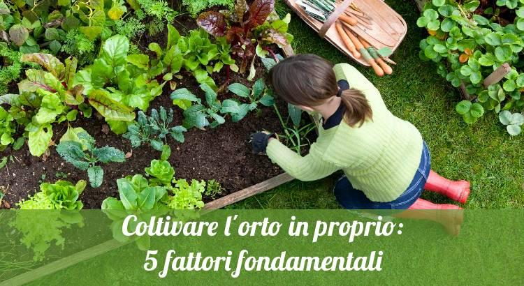 Coltivare l'orto in casa.