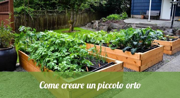 Creare un piccolo orto.
