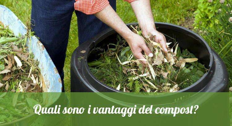Vantaggi del compostaggio come fertilizzante.