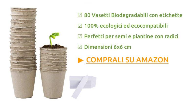 Vasetti biodegradabili per semenzaio.